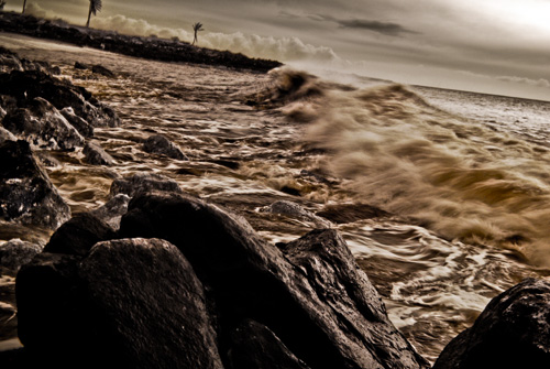roaring oceans