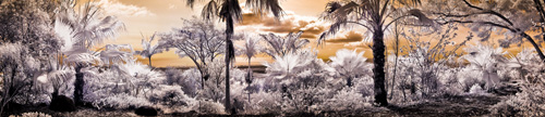 Hui grounds in infrared PANO