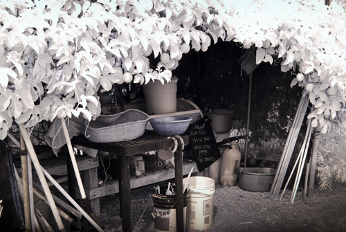 Tool shed in the garden