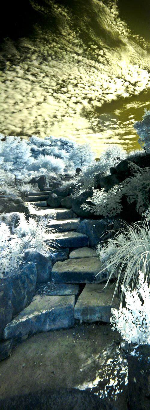 Garden-stairs_Panorama1