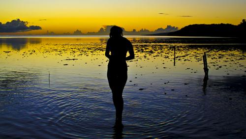 Sunset Wader